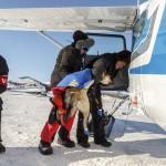 Flying the Iditarod