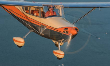 Owner's Perspective: Cessna 172
